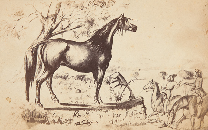 Reprodukcja rysunku (pióro, tusz, lawowany) w: Georg Hamilton, The Horse: Its Treatment in Australia, Adelaide 1864. Ze zbiorów National Museum of Australia.
