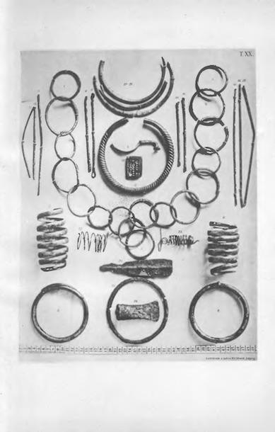 Zabytki prehistoryczne z Muzeum im. Mielżyńskich, w: Album zabytków prehistorycznych Wielkiego Księstwa Poznańskiego, 1894