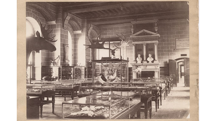 Widok na salę I Musée des Antiquités nationales, ok. 1867, Saint-Germain-en-Laye, musée  d'Archéologie nationale et domaine national de Saint-Germain-en-Laye, źródło: https://francearchives.fr/fr/commemo/recueil-2017/26287906